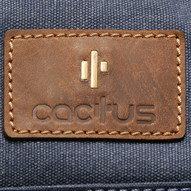 Cactus – Denim Blue Canvas Travel Bag/Holdall with Brown Leather Trim