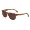 Diesel 55DSL – Black & Clear Ben Dover Classic Wayfarer Style Sunglasses