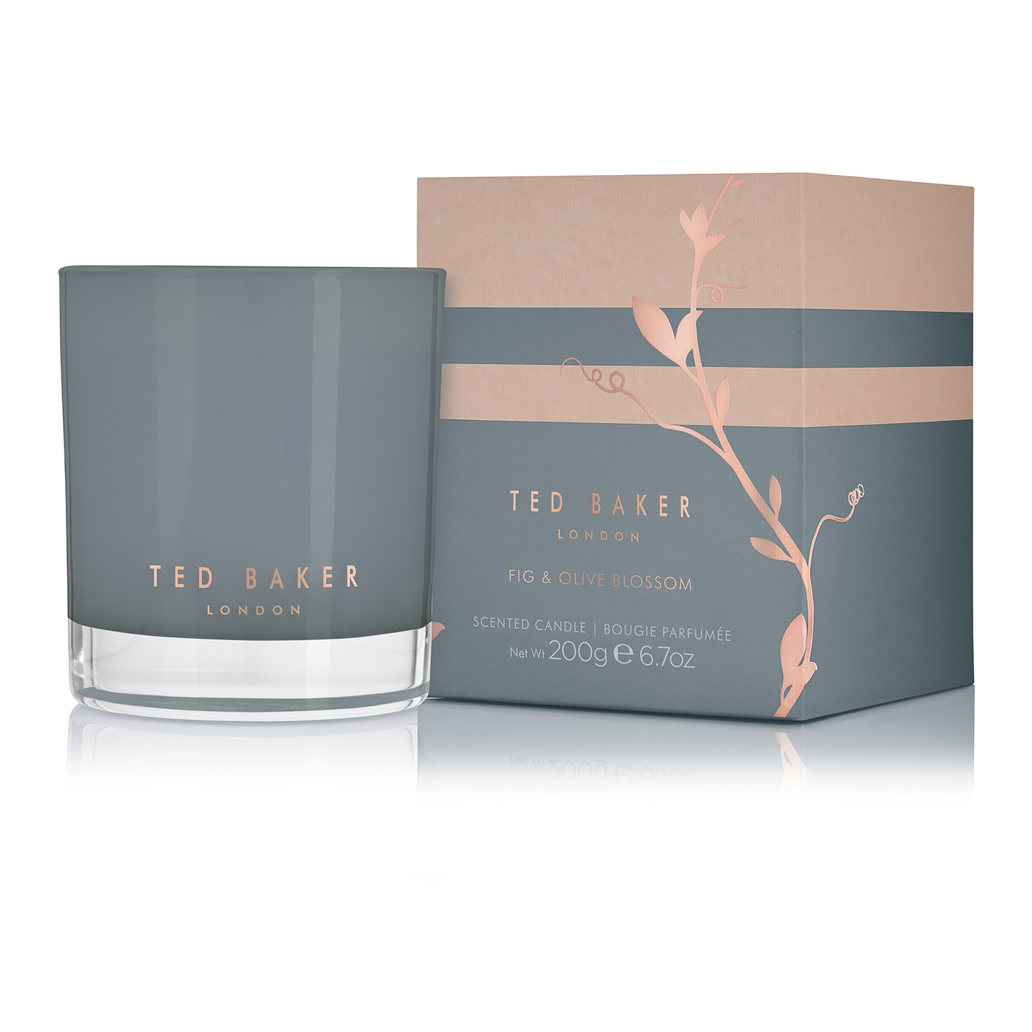 Ted Baker – CARTISE Fig & Olive Blossom Scented Candle in Presentation Gift Box