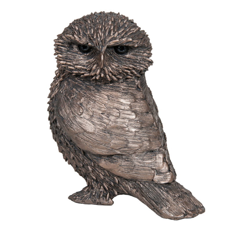 Frith Sculpture – Olly – Little Owl in Bronze Resin by Thomas Meadows in Box
