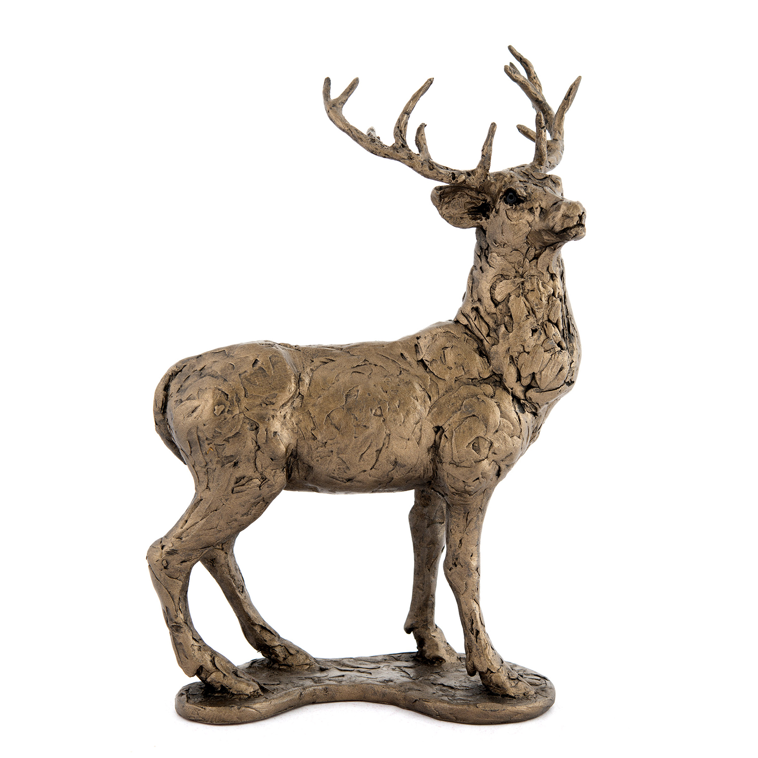 Frith Sculpture – Red Deer Stag in Bronze Resin by Thomas Meadows in Box